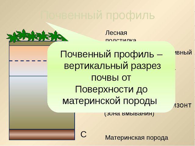 а б В 2. Что такое плодородие почвы? Способность почвы давать высокие урожаи...