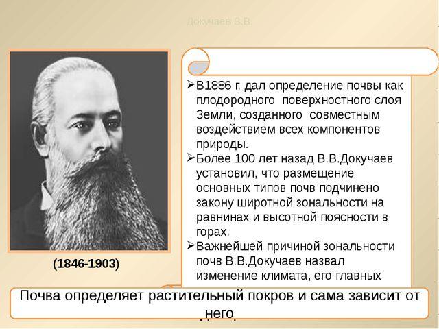В1886 г. дал определение почвы как плодородного поверхностного слоя Земли, со...