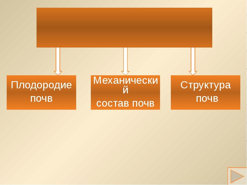 Плодородие почв Механический состав почв Структура почв Основные свойства почв