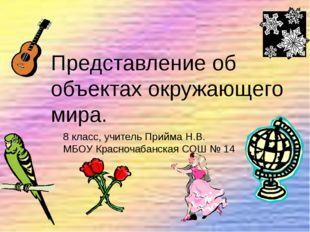 Представление об объектах окружающего мира. 8 класс, учитель Прийма Н.В. МБОУ
