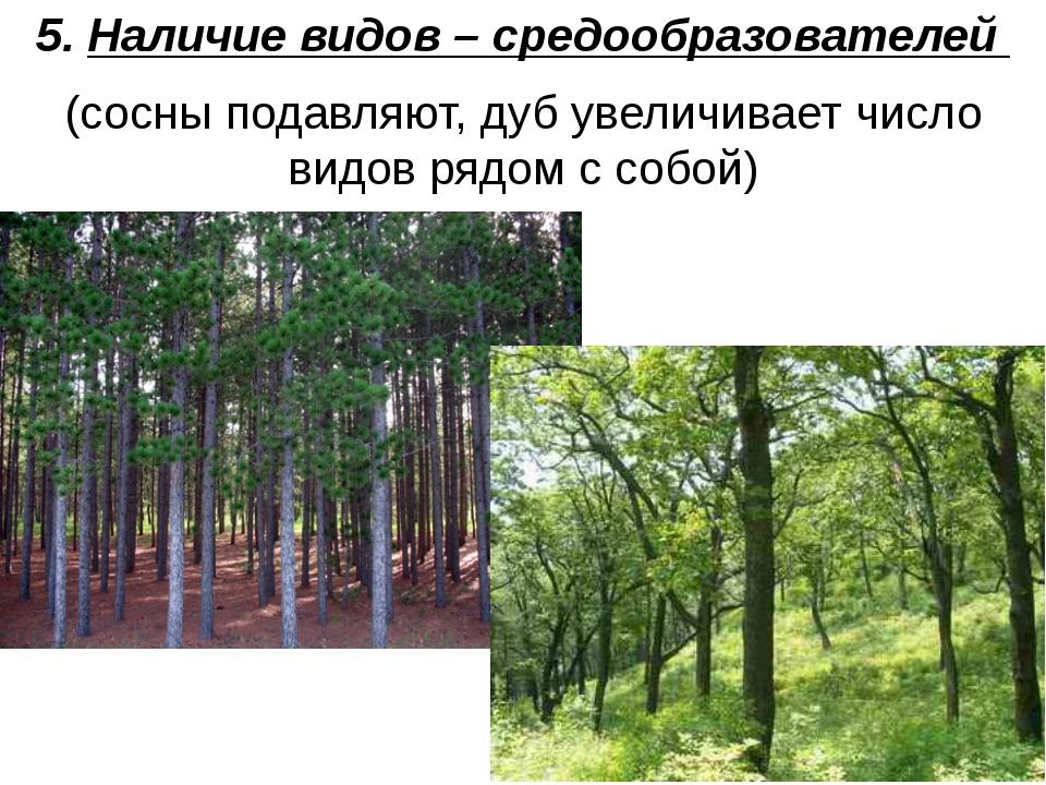 5. Наличие видов – средообразователей (сосны подавляют, дуб увеличивает число...