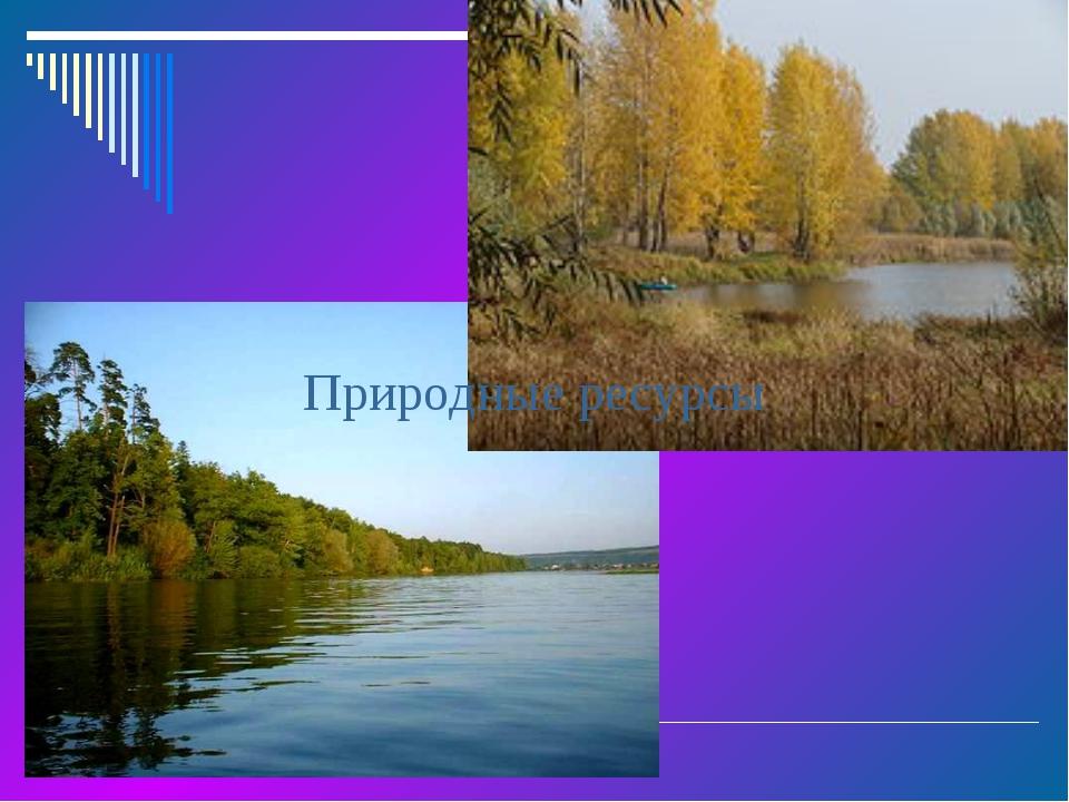 Территория района вытянута с юго-запада на северо-восток на 1000 км. Климат –...