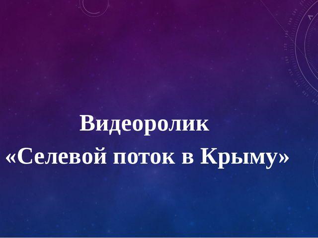 Видеоролик «Селевой поток в Крыму»
