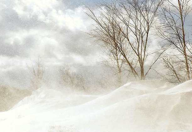 http://www.stihi.ru/pics/2012/07/02/7447.jpg