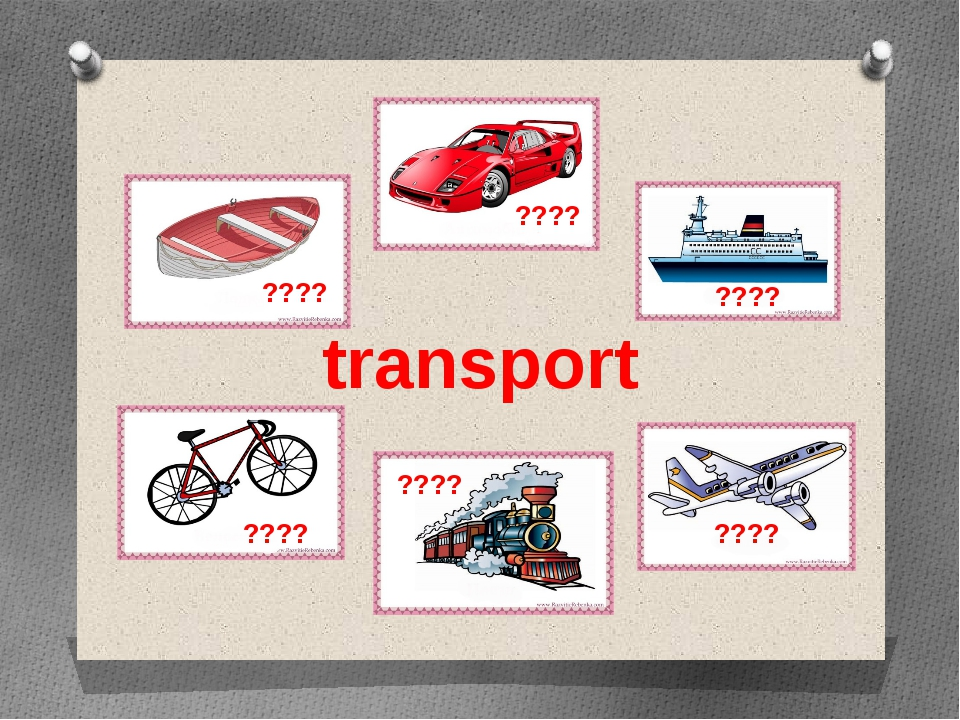 transport ???? ???? ???? ???? ???? ????