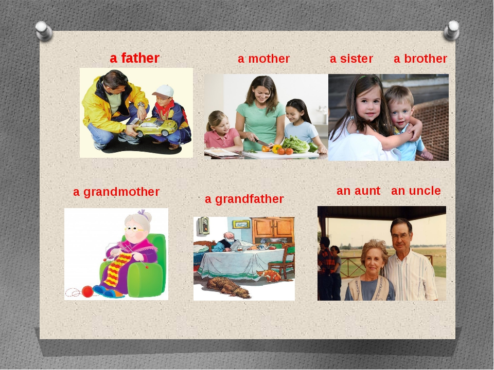 a father a mother a sister a brother a grandmother a grandfather an aunt an u...