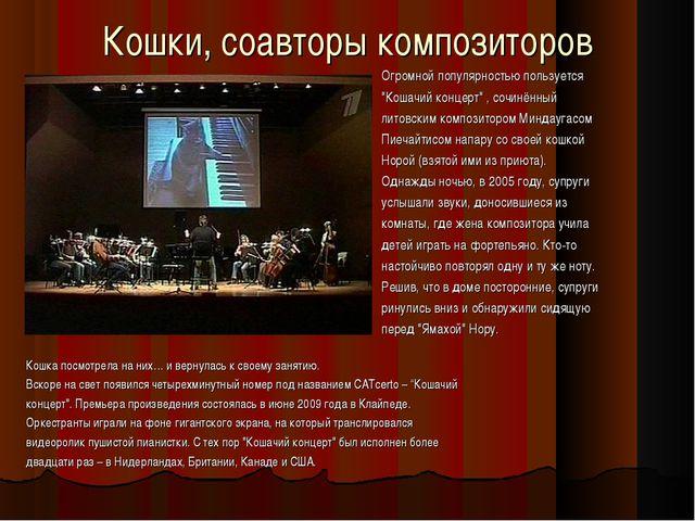 """Кошки, соавторы композиторов Огромной популярностью пользуется """"Кошачий конце..."""