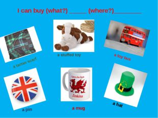 a tartan scarf a stuffed toy a toy bus a pin a mug a hat I can buy (what?) __