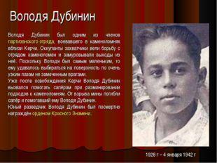Володя Дубинин Володя Дубинин был одним из членов партизанского отряда, воева