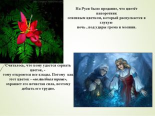 На Руси было предание, что цветёт папоротник огненным цветком, который распус