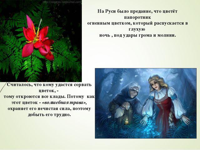 На Руси было предание, что цветёт папоротник огненным цветком, который распус...