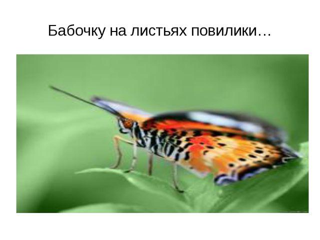 Бабочку на листьях повилики…