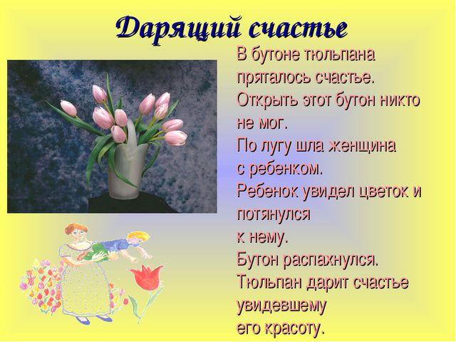 Дарящий счастье В бутоне тюльпана пряталось счастье. Открыть этот бутон никто...