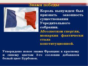 Утверждено новое знамя Франции: к красному и синему цветам 3-го сословия доба
