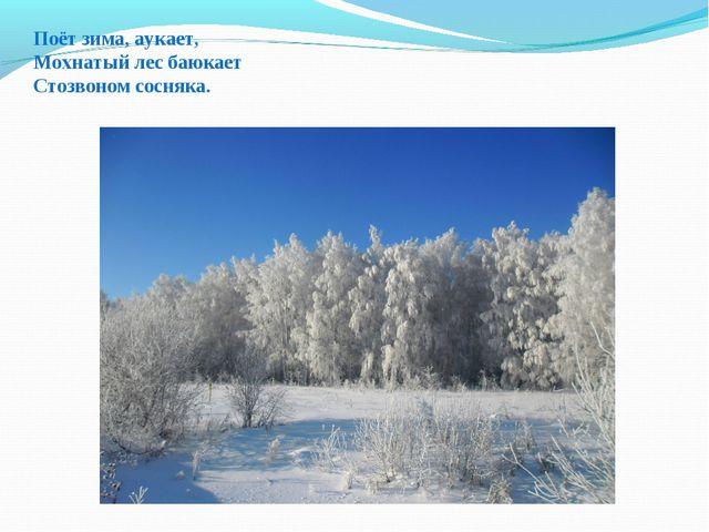 Поёт зима, аукает, Мохнатый лес баюкает Стозвоном сосняка.