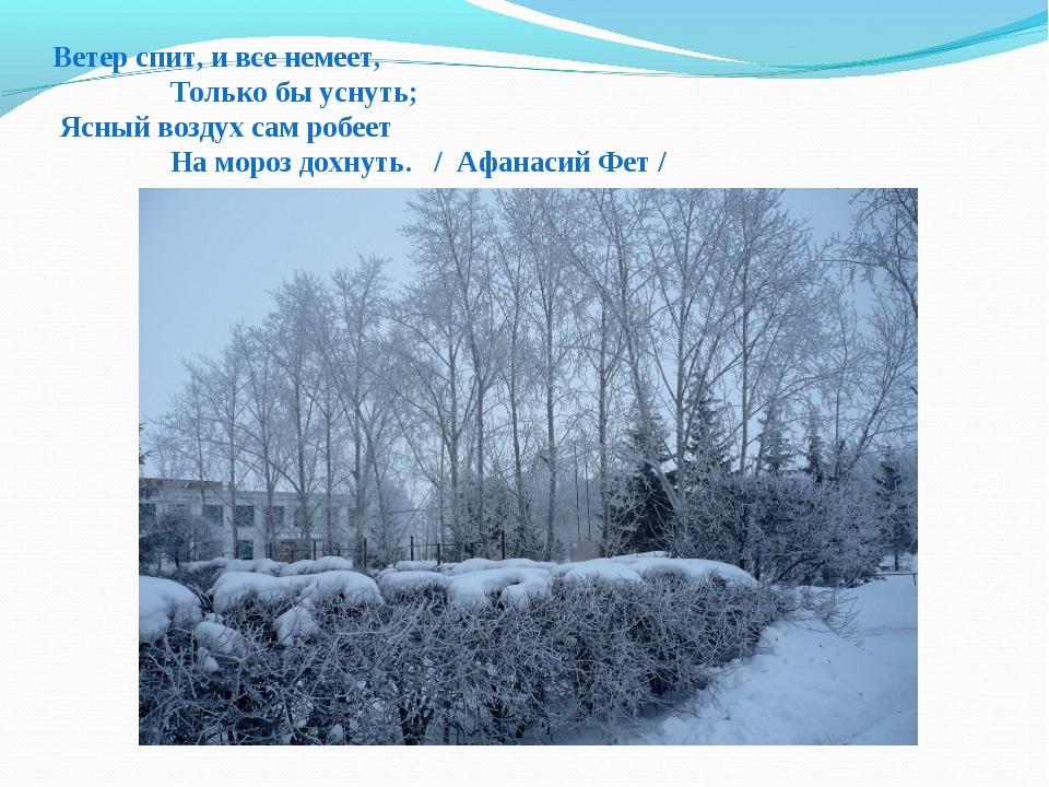 Ветер спит, и все немеет, Только бы уснуть; Ясный воздух сам робеет На мороз...