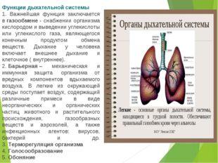 Функции дыхательной системы 1. Важнейшая функция заключается вгазообмене- с