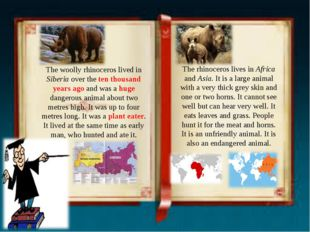 The woolly rhinoceros lived in Siberia over the ten thousand years ago and wa