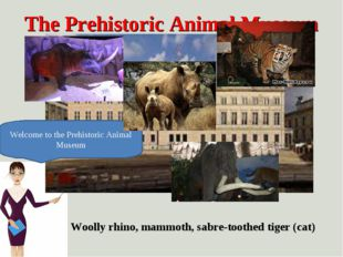 The Prehistoric Animal Museum Welcome to the Prehistoric Animal Museum Woolly
