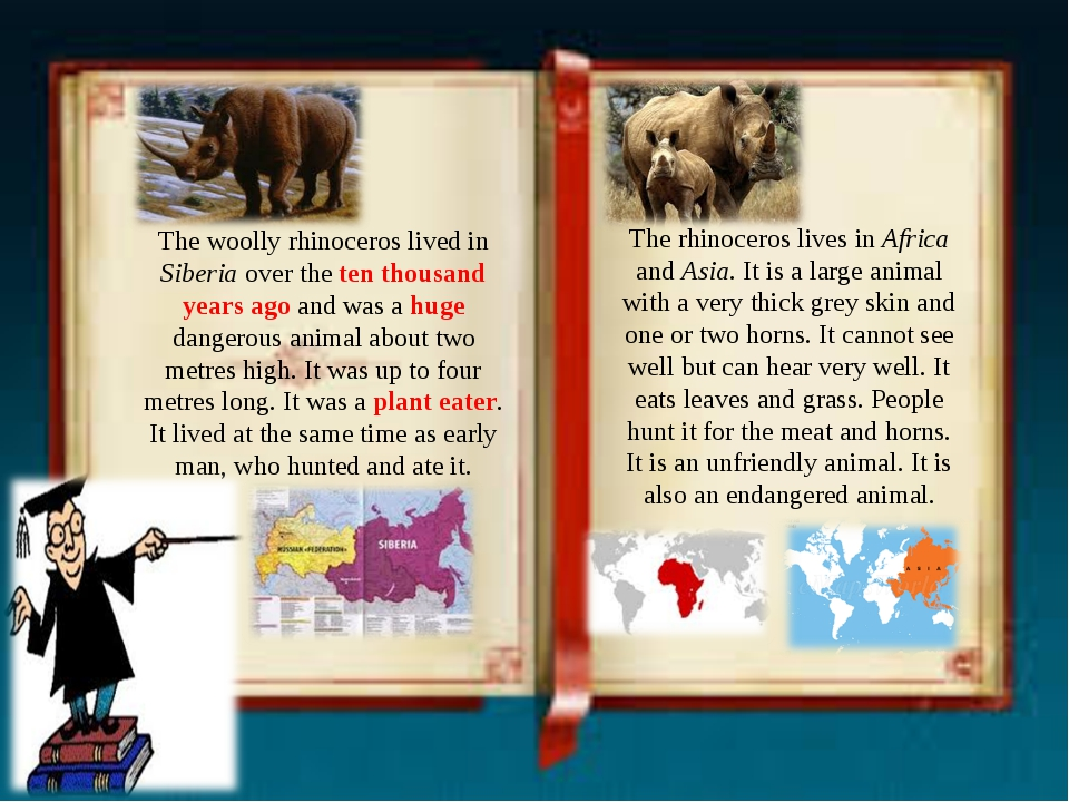 The woolly rhinoceros lived in Siberia over the ten thousand years ago and wa...