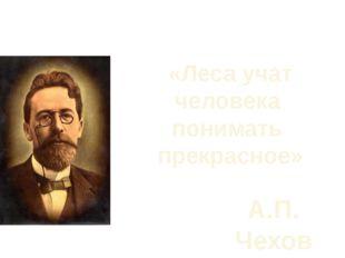 «Леса учат человека понимать прекрасное» А.П. Чехов