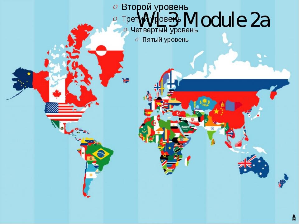 WL3 Module 2a