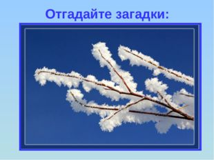 Отгадайте загадки: И не снег, и не лёд, А серебром деревья уберёт.