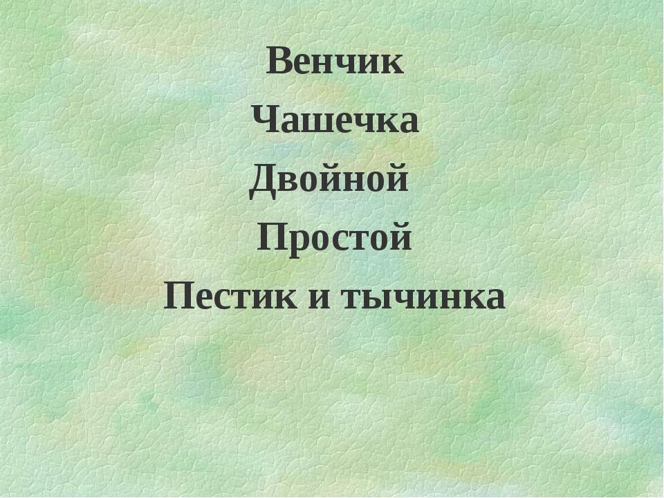 Венчик Чашечка Двойной Простой Пестик и тычинка
