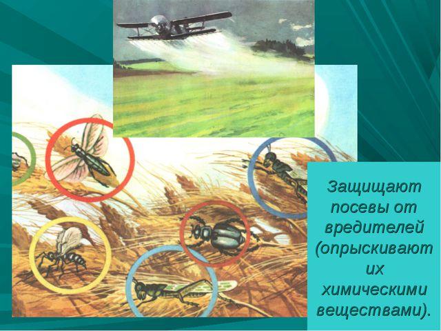 Защищают посевы от вредителей (опрыскивают их химическими веществами).