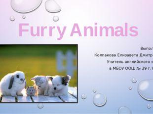 Furry Animals Выполнила: Колпакова Елизавета Дмитриевна Учитель английского я