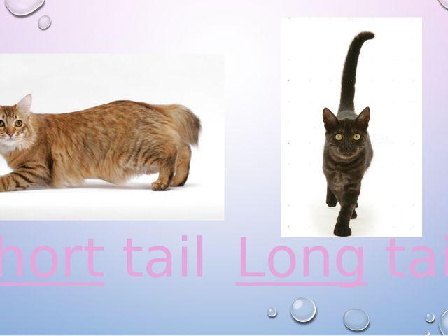 Short tail Long tail