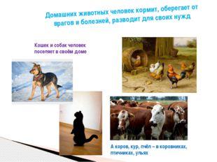 Домашних животных человек кормит, оберегает от врагов и болезней, разводит дл