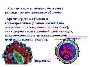 Многие вирусы, помимо белкового капсида, имеют внешнюю оболочку. Кроме вирус