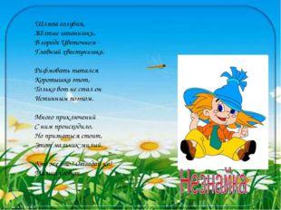 Шляпа голубая, Жёлтые штанишки, В городе Цветочном - Главный хвастунишка. Ри