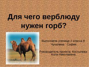 Для чего верблюду нужен горб? Выполнила ученица 2 класса В Чучалина София Рук
