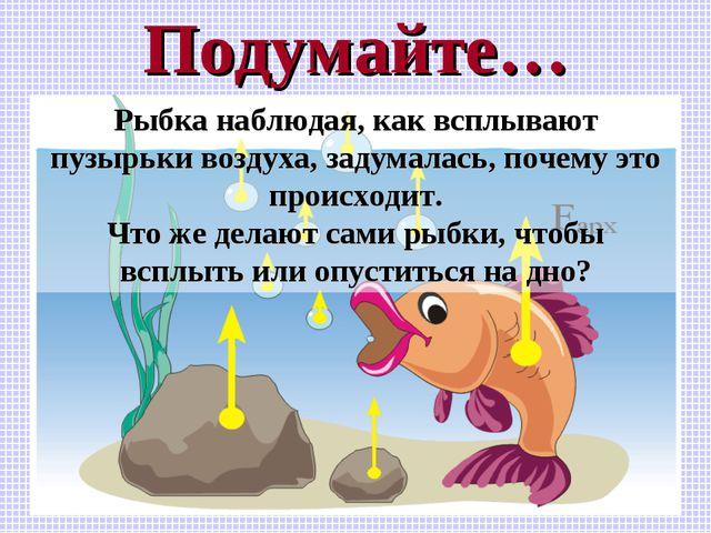Подумайте… Рыбка наблюдая, как всплывают пузырьки воздуха, задумалась, почему...