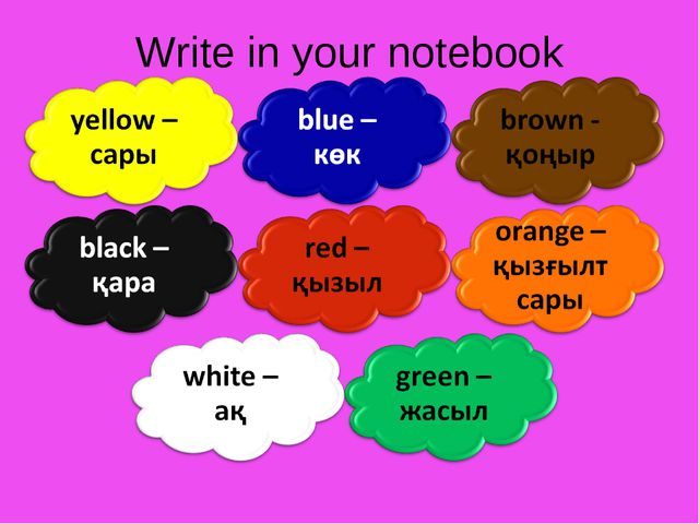 Write in your notebook