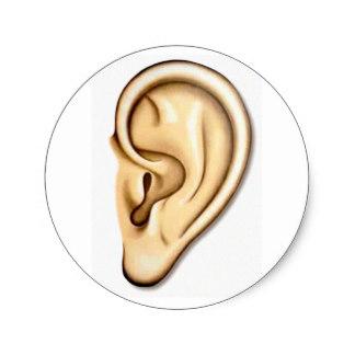 http://rlv.zcache.co.uk/human_ear_doctor_audio_audiologist_ear_candy_sticker-rb645577f587c4742bcfc965c14e5c0bf_v9waf_8byvr_324.jpg