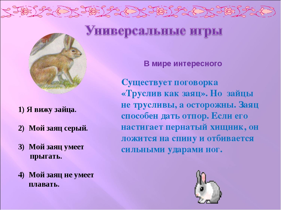 1) Я вижу зайца. 2) Мой заяц серый. 3) Мой заяц умеет прыгать. 4) Мой заяц не...