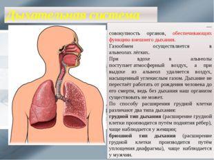 Дыхательная система Дыха́тельная систе́ма челове́ка— совокупность органов, о