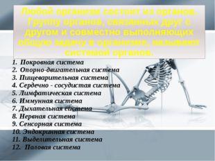 Покровная система Опорно-двигательная система 3. Пищеварительная система 4. С