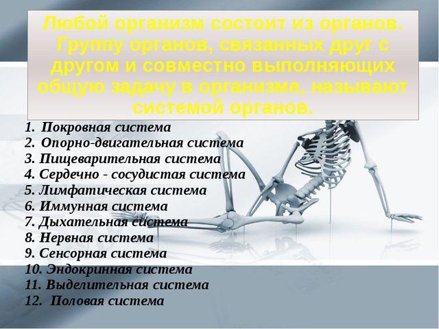 Покровная система Опорно-двигательная система 3. Пищеварительная система 4. С...