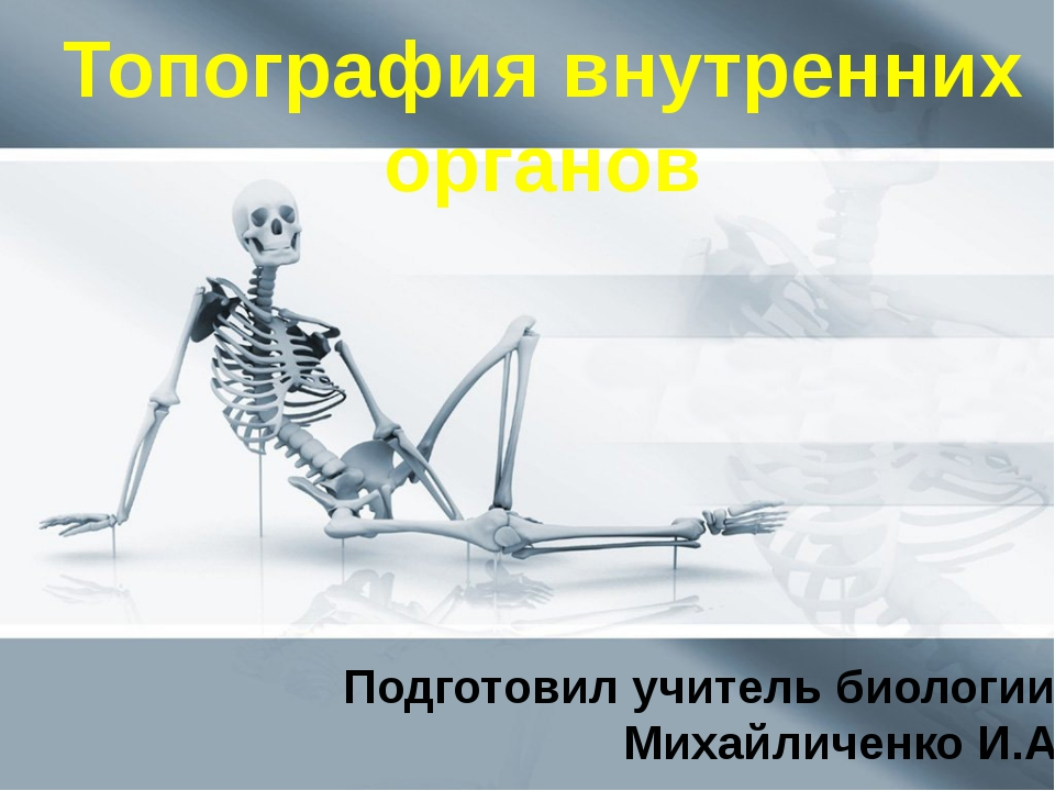 Топография внутренних органов Подготовил учитель биологии: Михайличенко И.А.