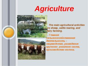 Agriculture The main agricultural activities are sheep, cattle rearing, and