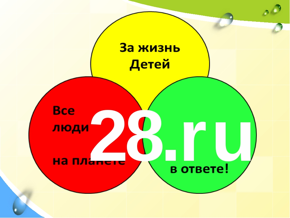 28.ru
