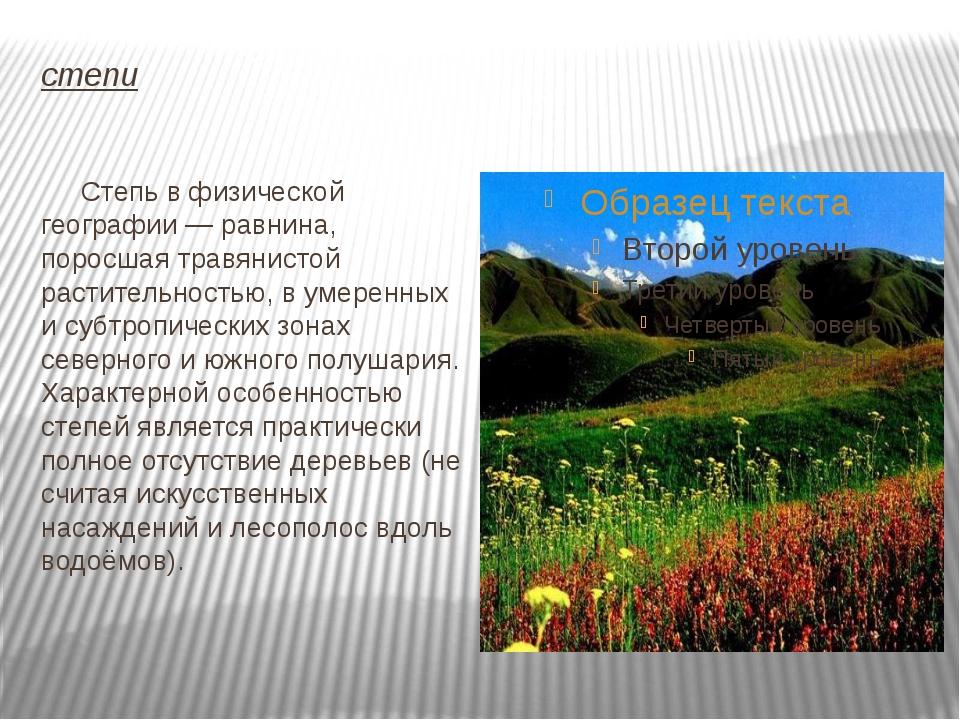 степи Степь в физической географии — равнина, поросшая травянистой растительн...