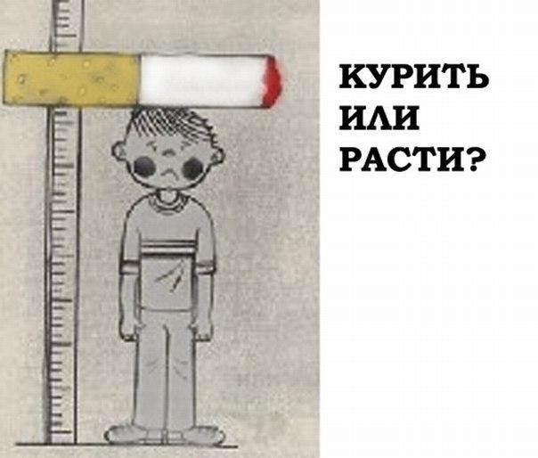 D:\Курить-или-расти.jpg