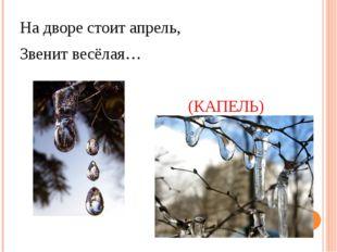 На дворе стоит апрель, Звенит весёлая… (КАПЕЛЬ)