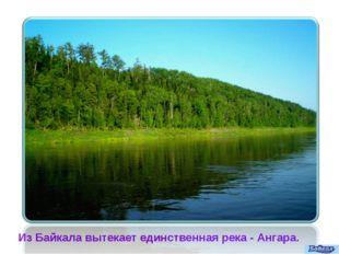 Из Байкала вытекает единственная река- Ангара.