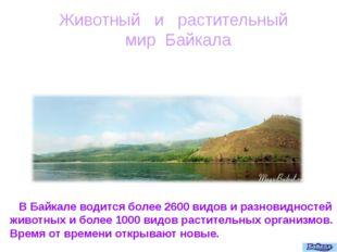 Животный и растительный мир Байкала В Байкале водится более 2600 видов и разн